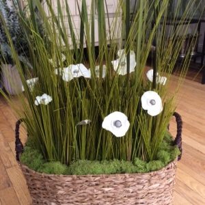 pavots blancs et herbes sauvages chez le  Parfumeur Annick Goutal à New York