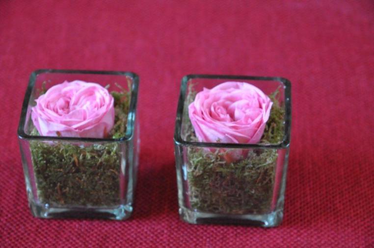 petit vase carré en verre transparent mousse verte naturelle et rose de jardin stabilisée. Simple et beau
