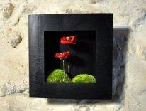un cadre noir qui sublime des coquelicots! Un vrai coin de jardin dans votre salon...