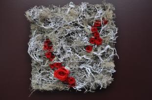 chemins de roses rouges sur prairie de lichens argentés.