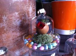 Des petits œufs à la liqueur entourent un œuf à la coquille chocolat de ma poule Marrans. Merci ma poulette !!